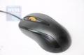 Мышь Gembird MUSOPTI8 -807U черный USB